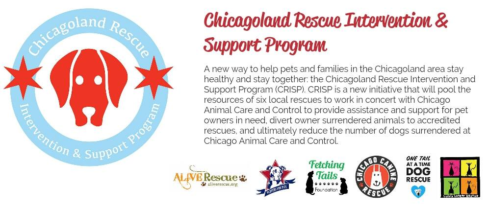 Chicagoland Rescue Intervention & Support Program
