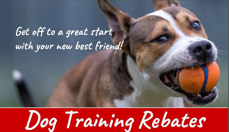 Dog Training Rebate