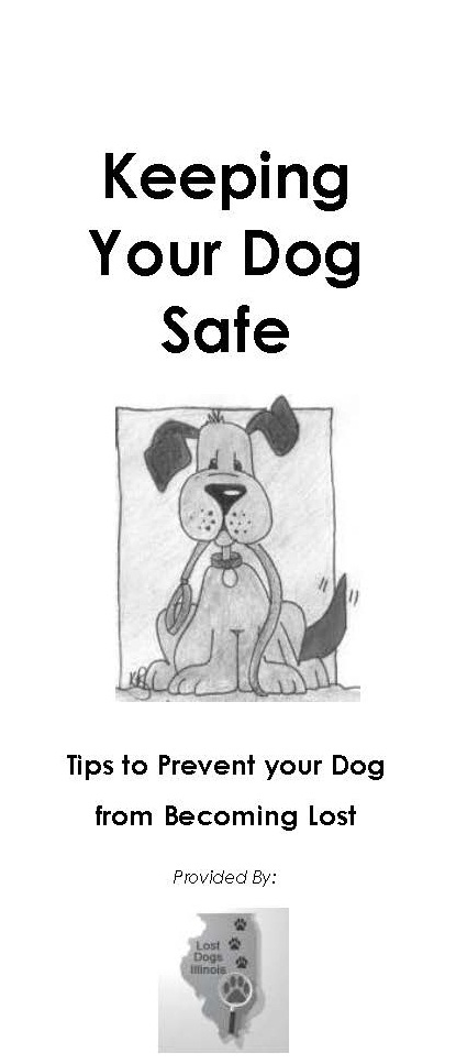 Keeping Your Dog Safe