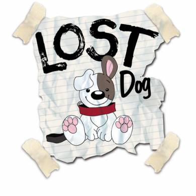city of chicago lost pet recovery lost dog 390x390