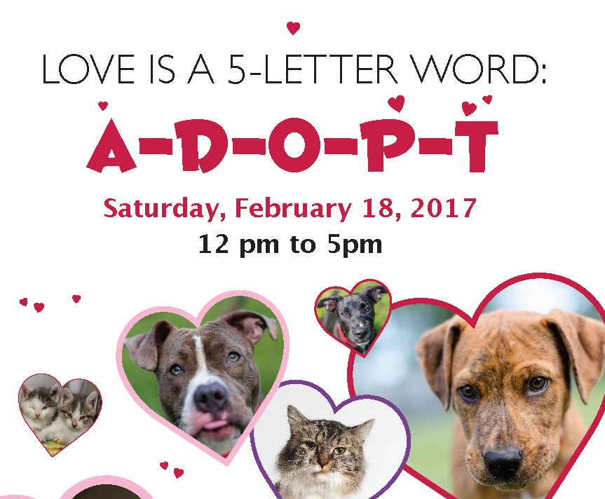Valentines Adoption Event
