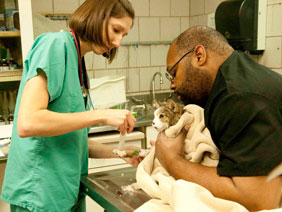 City of Chicago :: Low Cost Pet Vaccine Clinic Dates