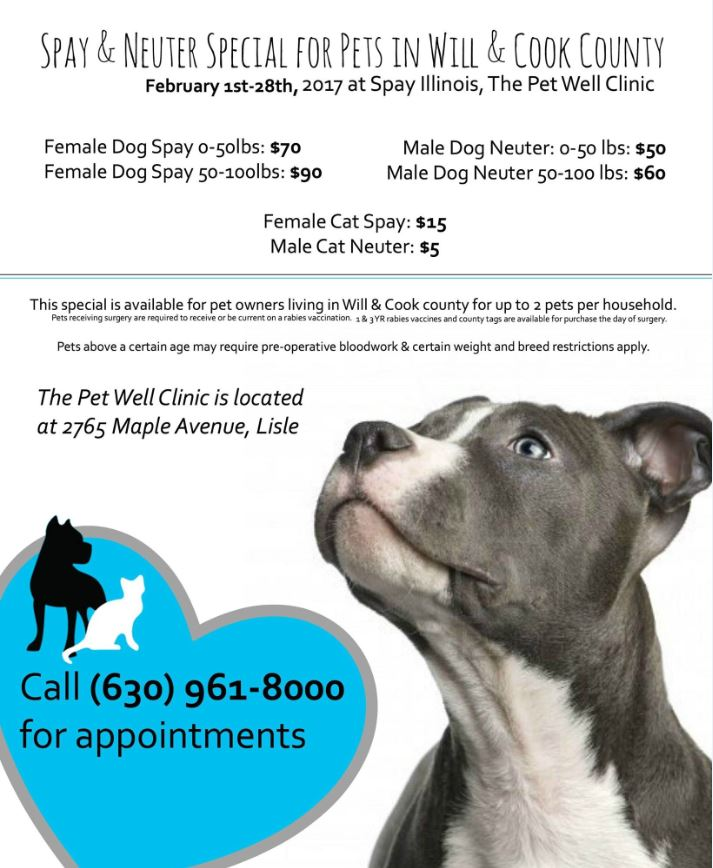 Spay Illinois - Pet Well Clinic