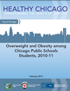 Healthy Chicago Obesity Report
