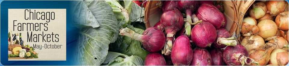 Chicago Farmers Market banner - fresh cabbage and red and yellow onions