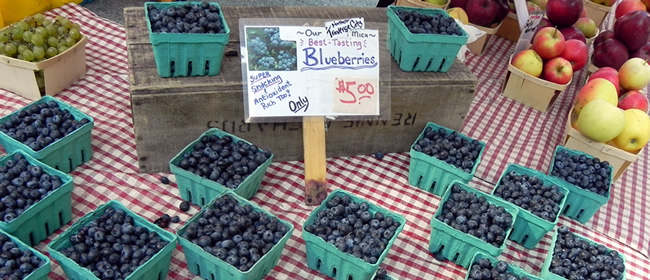 Fresh blueberries and grapes