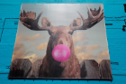 Jacob Watts, Moose Bubblegum Bubble, 2014. 33 E. Congress. Photo courtesy of the Wabash Arts Corridor