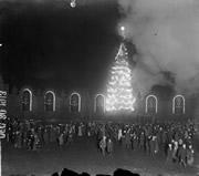 christmas tree lighting chicago. the city of chicagou0027s 1913 christmas tree in grant park lighting chicago