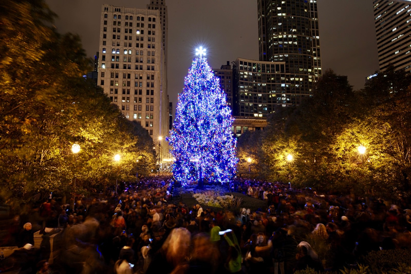 Chicago Christmas.City Of Chicago City Of Chicago Christmas Tree