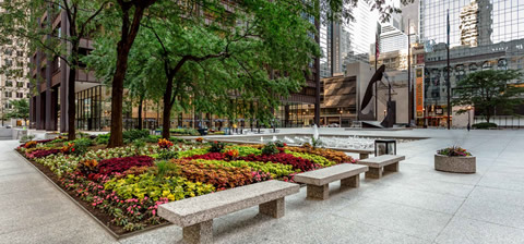 Daley Plaza