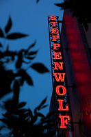 Steppenwolf Theatre Company (Photo by Kyle Flubacker)