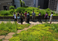 City Hall Rooftop Garden