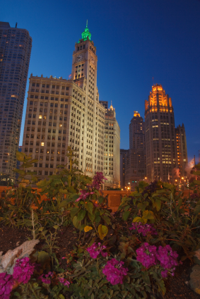 Image of Chicago at night