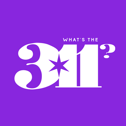 What's the 311