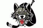 Chicago Wolves, Rosemont, IL
