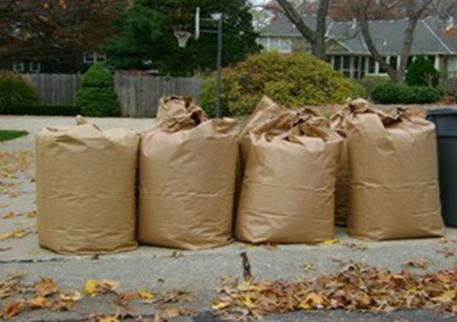 Separate Yard Waste Collection