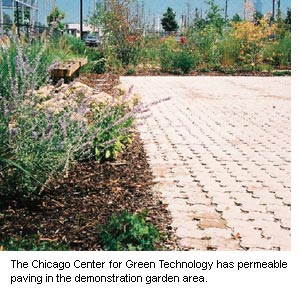 Photograph of the  permeable paving in the demonstration garden area at the Chicago Center for Green Technology.